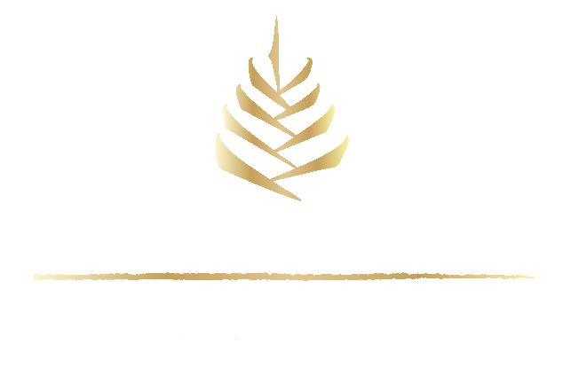 Grupo Bosque